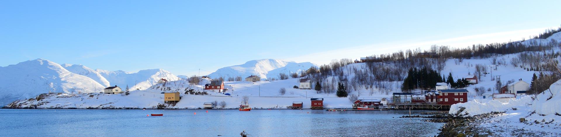 bergfuehrer-stephan-ruoss-skitouren-in-norwegen-lyngen-alpen